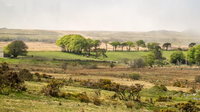 Dartmoor landskab