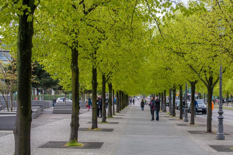Grønne træer i Berlin