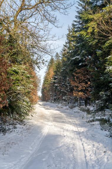Sne Hundsbæk 2 efter