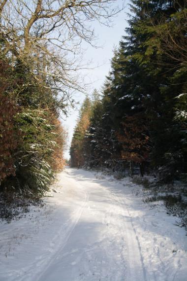 Sne Hundsbæk 2 før