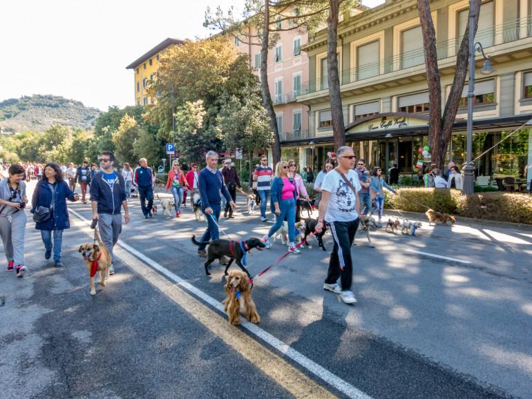 Montecatini Terme Dog pride day